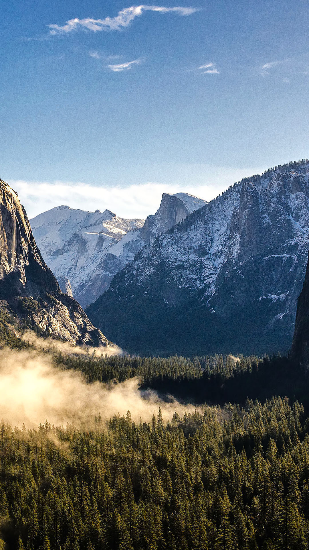 yosemite-national-park-mountain-mist-forest-android-wallpaper