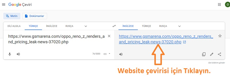 google ceviri website cevirme