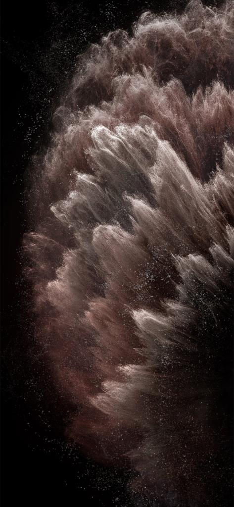 iPhone 11 Pro stock wallpaper via AR72014 rose