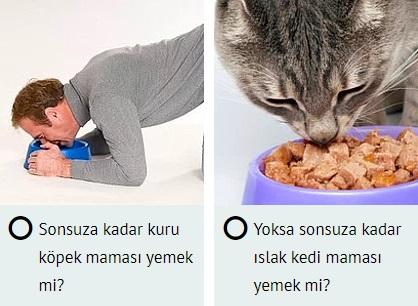 hangisini yemek isterdin