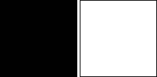siyahmi beyazmi