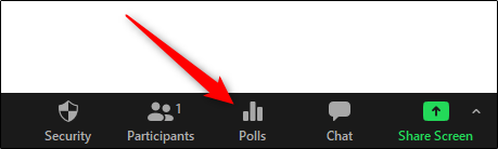 zoom polls