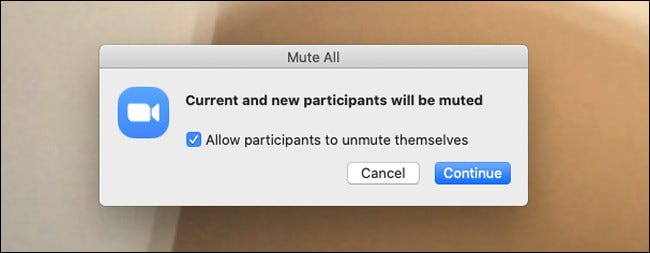 zoom participants mute all allow participants to unmute themselves