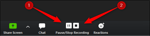 zoom record pause stop